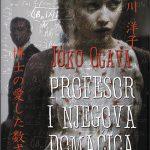 PROFESOR - Joko Ogava